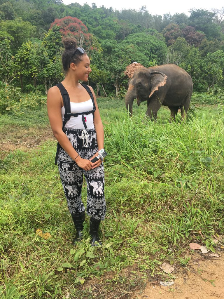 Looking at elephant from a distance at Phuket Elephant Sanctuary in Phuket, Thailand