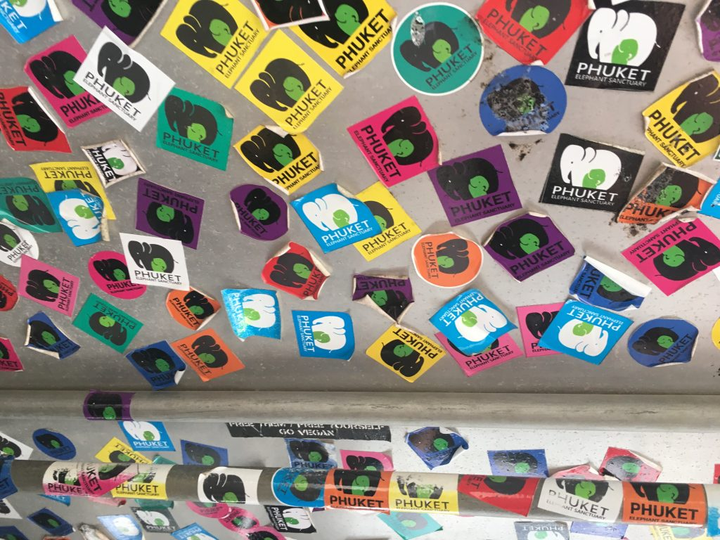 Stickers on the ceiling of truck on the way to Phuket Elephant Sanctuary in Phuket, Thailand